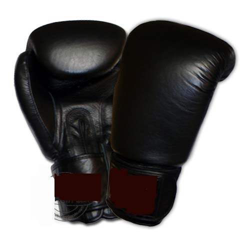 Twins model Boxing glove