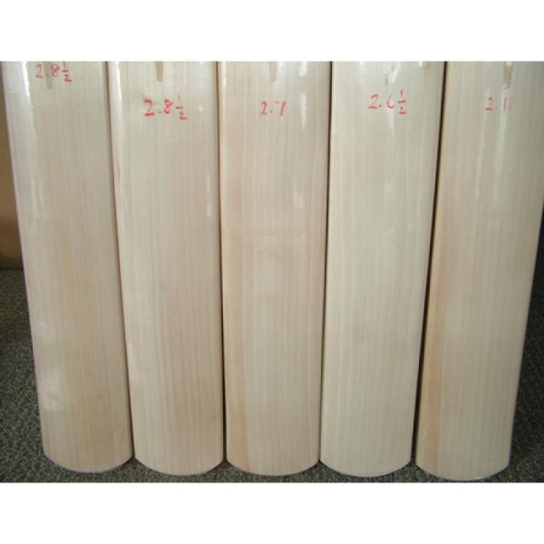SS TON PLAIN GRADE 1 CRICKET BAT  2013