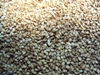Roasted Natural Sesame Seed