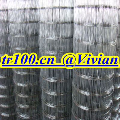 201grade stainless steel welded mesh