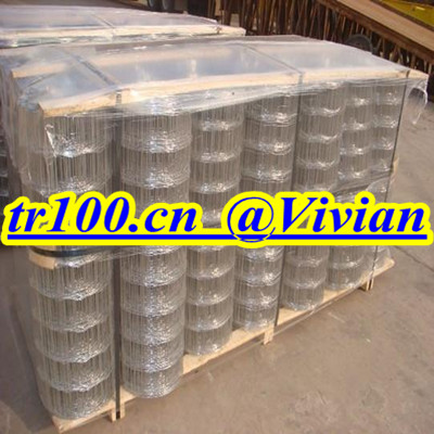 1/4inch welded wire mesh