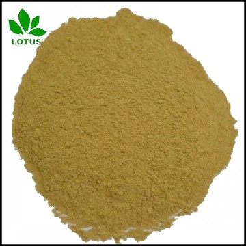 High protein Hydrolyzed feather meal FM For animal feed or organic fertilizer